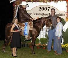 Grand Central, Shown by: Tom Williams Two Year Old Open World Champion Stallion