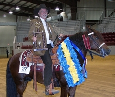 HTR's Rock & Roller, Shown by: Steve Wood - 2006 Florida Gaited Classic Champion