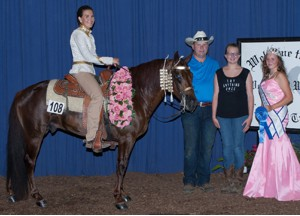 Mid America Amateur 3 Year Old Champion Shown by: Danielle Anthony Owned by: Adam Jokisch