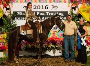 Open Am 3 Year Old Futurity Mares Champion