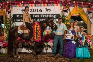 2016 Three Year Old Futurity Open Am Champion