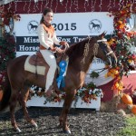 Open 3 Year Old World Champion Stallion