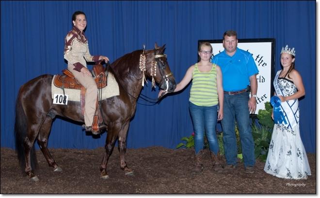 Mid America Grand Slam Amateur 3 Year Old Stallions & Geldings Champion