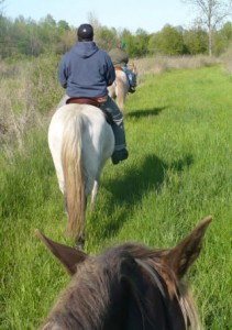 On the Trail - 2008 trail ride
