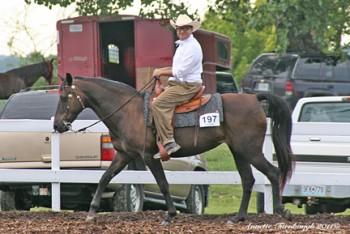 Nathan Granner rides Velvet in the historic Longview Horsepark arena